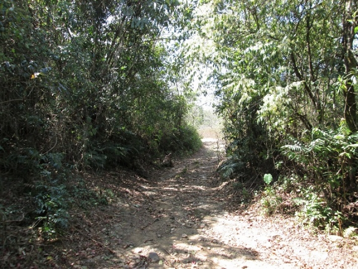 The Silchar-Bishenpur Track or Old Cachar Road. Two Victoria Crosses were awarded near here in June 1944.